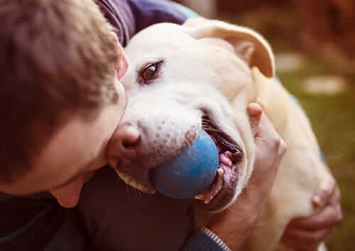 Benefits of Pet Friendly Mental Health Facilities